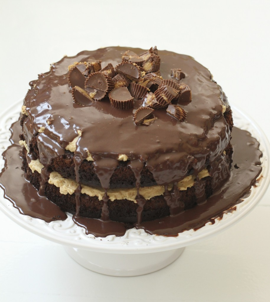 Chocolate Fudge Peanut Butter Crunch Cake {Satisfy My Sweet Tooth}
