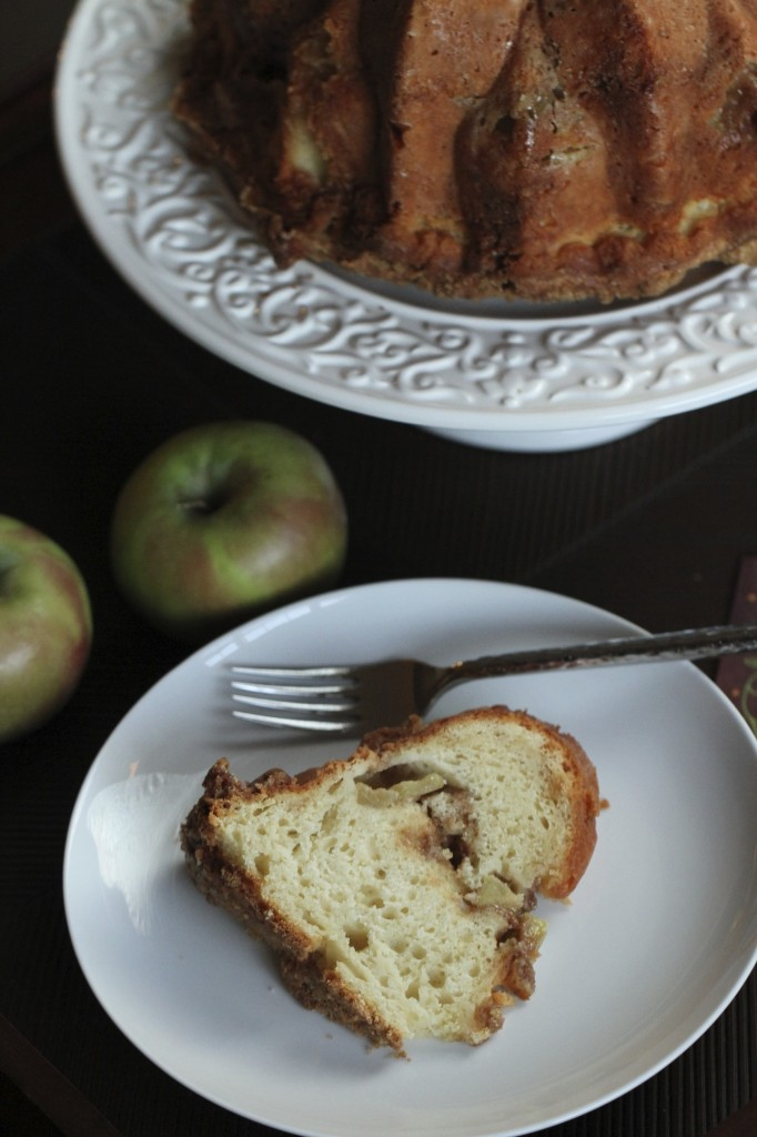 Apple Streusel Cake {satisfymysweettooth.com}