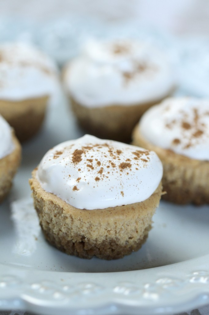 Mini Pumpkin Cheesecakes with Gingersnap Crust {satisfymysweettooth.com}