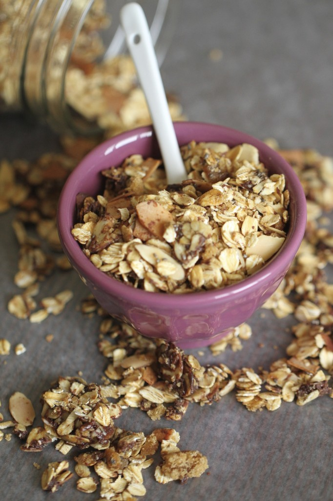 Almond Joy Granola {satisfymysweettooth.com}