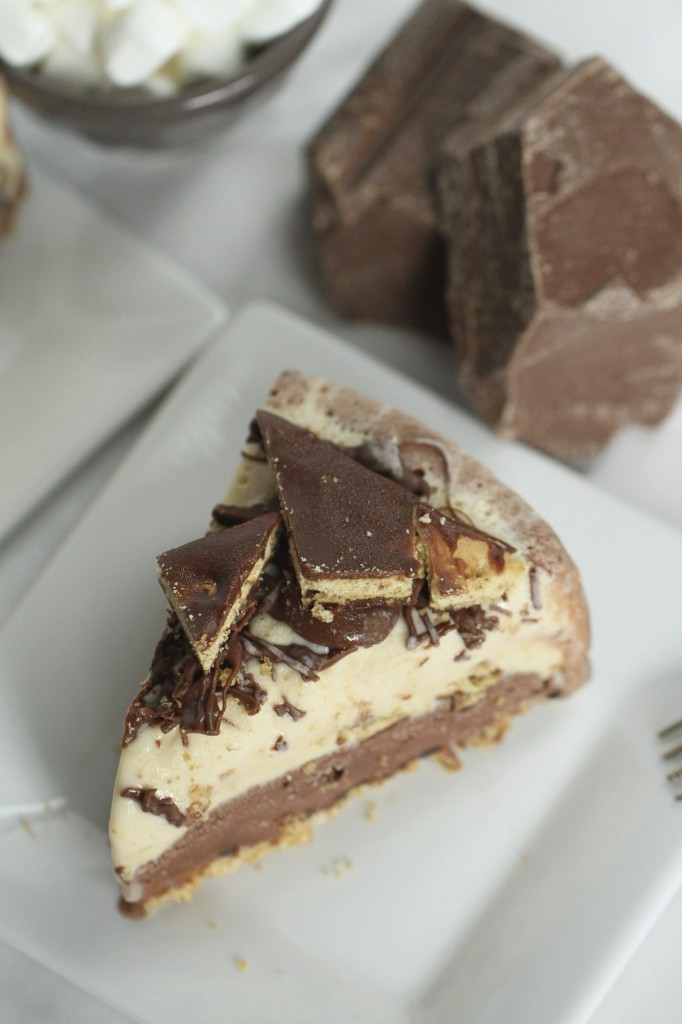 S'mores Ice Cream Cake {satisfymysweettooth.com}