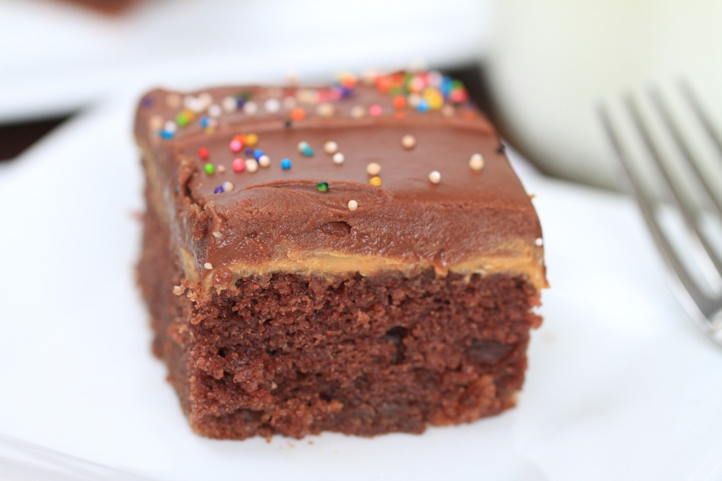 The Best Chocolate Sheet Cake {satisfymysweettooth.com}